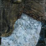 Pierangela Orecchia - Cirillo cerca la luna 105x55